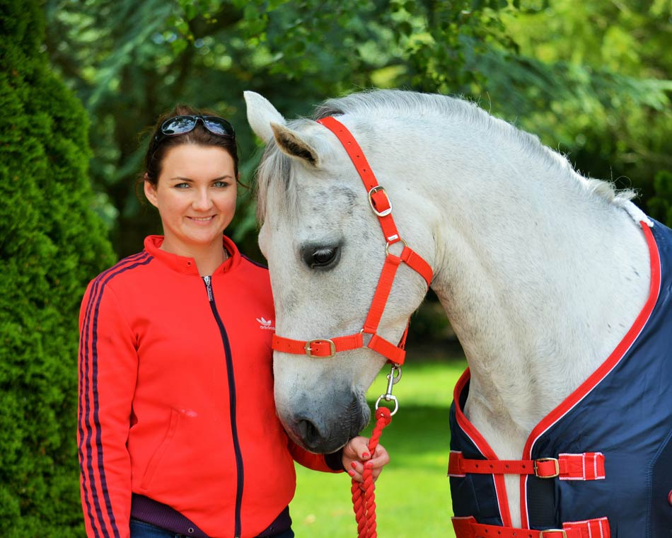 Horse Sale Ireland