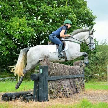 Jumping ponies