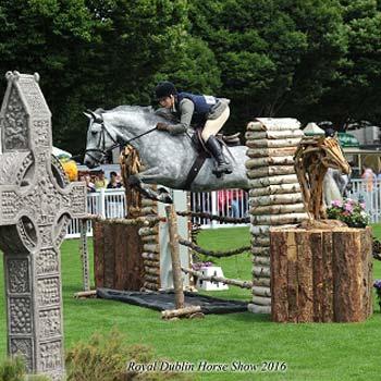 show ponies ireland