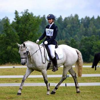 sports event ponies for sale