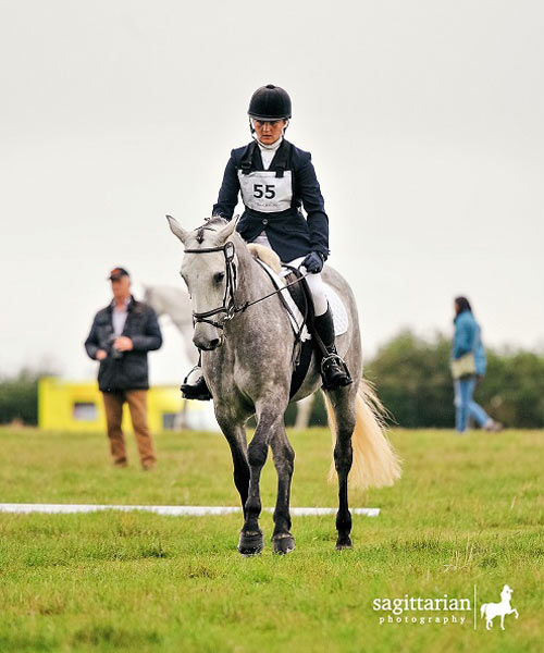 competition mare